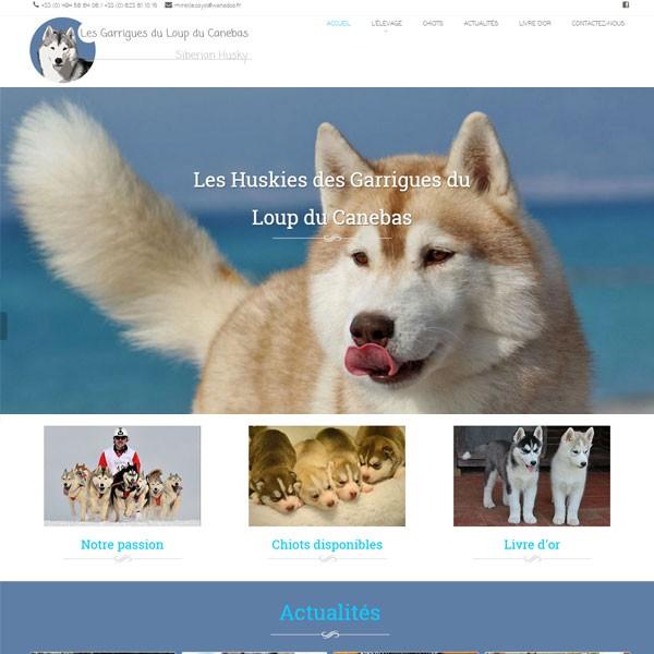 Conception de site web pour éleveurs de chiens