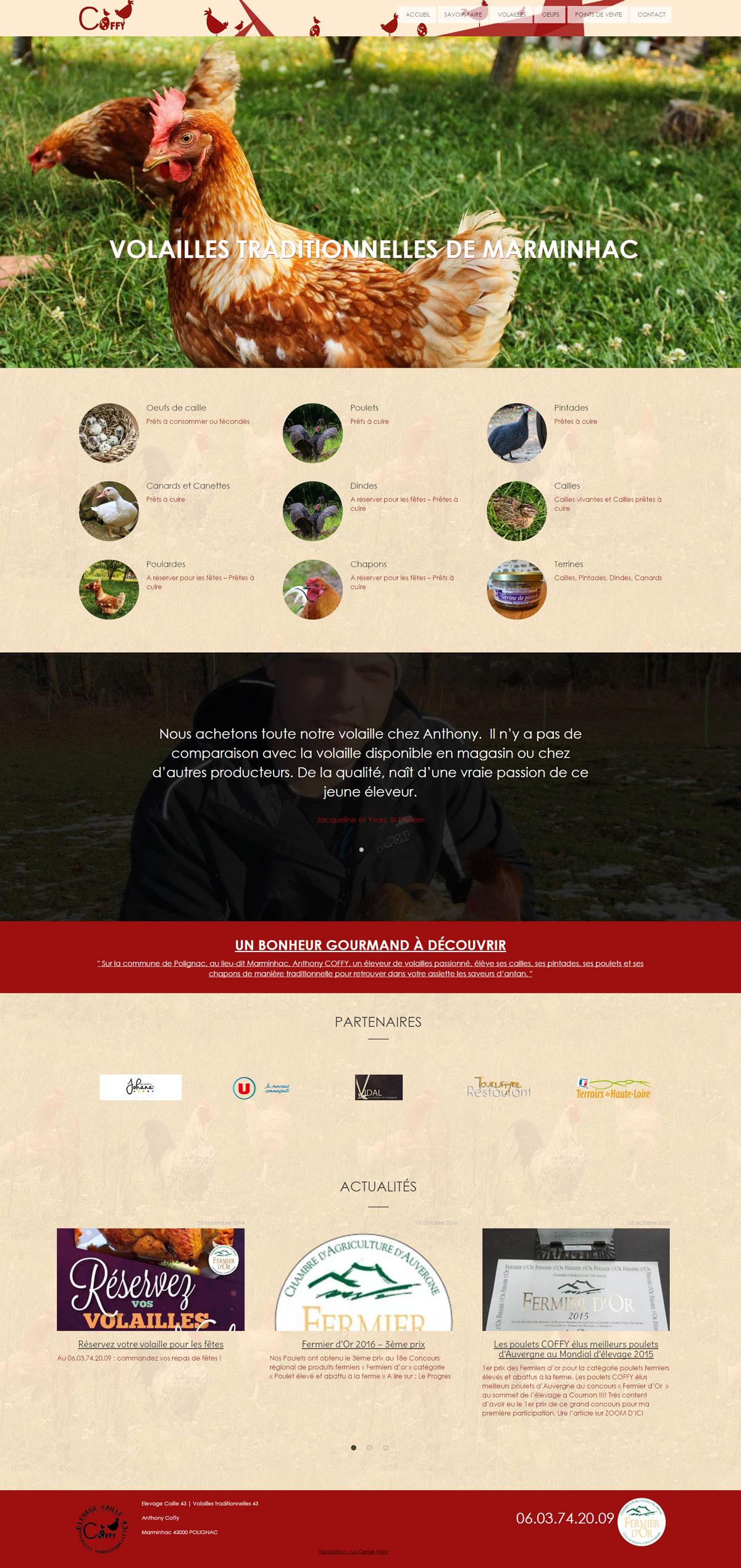 création de site web à st paulien 43