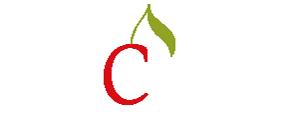 agence de communication au puy en velay création de site internet 43
