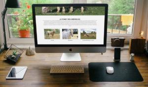 création site internet le puy en velay